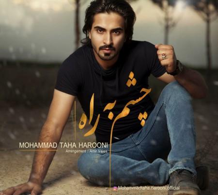دانلود آهنگ جدید محمد طاها هارونی بنام چشم به راه