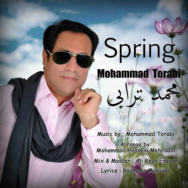 دانلود آهنگ جدید محمد ترابي به نام بهار