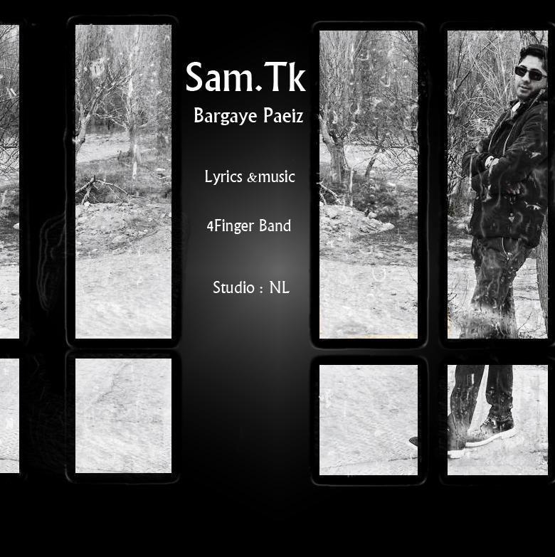 دانلود آهنگ جدید سام TK به نام برگ های پاییز
