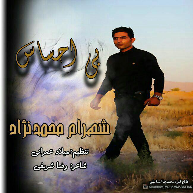 دانلود آهنگ جدید شهرام محمدنژاد بنام بی احساس
