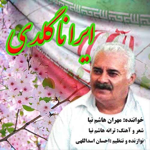 دانلود آهنگ جدید مهران هاشم نیا بنام ایرانا گلدی