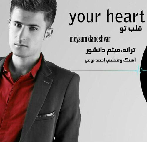 دانلود آهنگ جدید میثم دانشور بنام قلب تو