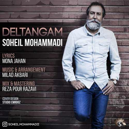 دانلود آهنگ جدید سهیل محمدی بنام دلتنگم