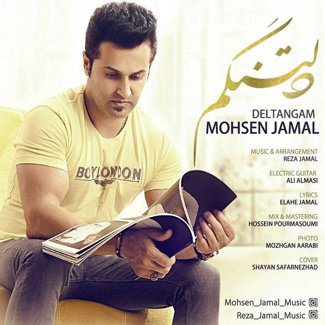 دانلود آهنگ جدید محسن جمال بنام دلتنگم