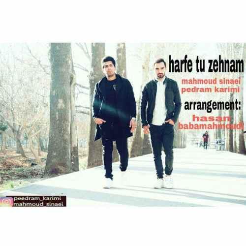 دانلود آهنگ جدید محمود سینایی و پدرام کریمی بنام حرف تو ذهنم