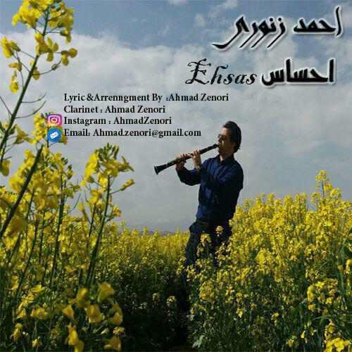 دانلود آهنگ جدید احمد زنوری بنام احساس